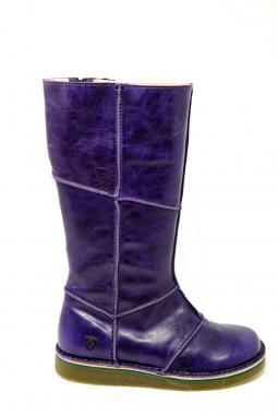 Grünbein Maria purple